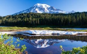 Картинка озеро, отражение, США, штат Вашингтон, гора Рейнир