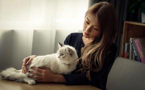 Картинка кошка, девушка, уют