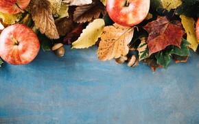 Картинка осень, листья, фон, яблоки, colorful, wood, background, autumn, leaves, осенние, apples, maple
