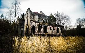 Картинка поле, дом, руины