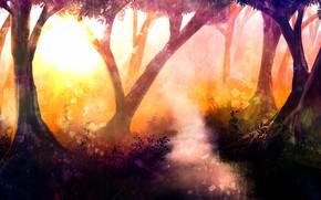 Картинка лес, природа, тропинка
