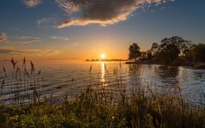 Картинка солнце, закат, берег, водоем