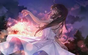 Картинка лето, девочка, белое платье, каникулы, длинные волосы, искорки, бенгальский огонь, со спины, вполоборота, вечернее небо, …