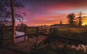 Картинка пейзаж, природа, туман, дерево, рассвет, поля, утро, мостик, луга, речушка, Tomczak Michał, Jeziorka river