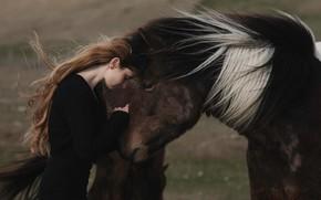 Картинка девушка, лошадь, Alessandra Barilla