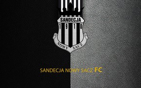 Картинка wallpaper, sport, logo, football, Sandecja Nowy Sacz