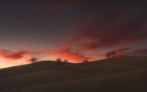 Картинка облака, деревья, холмы, trees, clouds, hills, Paolo Lazzarotti