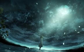 Картинка небо, вода, подсолнухи, пасмурно, луна, девочка