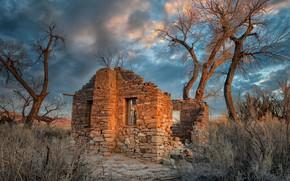 Картинка United States, Utah, abandoned house, Cottonwood Trees, Hanksville