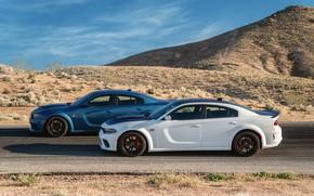 Картинка Дорога, Колеса, Dodge, Диски, Charger, Hellcat, SRT, 2020, Dodge Charger SRT, Hellcat widebody