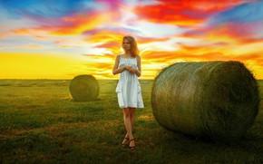 Картинка небо, трава, девушка, свет, платье, сено, Andrey Metelkov, Андрей Метельков