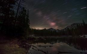 Картинка лес, деревья, горы, ночь, озеро, отражение, берег, ели, Канада, водоем, звездное небо, ночное небо, звездные …