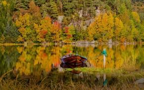 Картинка осень, лес, трава, пейзаж, природа, озеро, отражение, лодка, гора, Норвегия