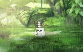 Картинка вода, природа, дождь, сова, листочек, совята