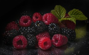Картинка ягоды, малина, фон, ежевика