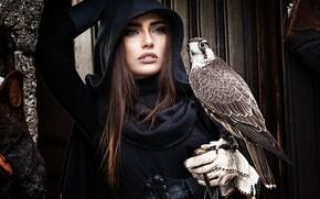Обои взгляд, девушка, лицо, поза, темный фон, друг, птица, доски, рука, портрет, капюшон, шатенка, сокол, перчатка, ...