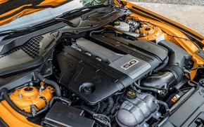 Картинка двигатель, Ford, 2018, фастбэк, Mustang GT 5.0