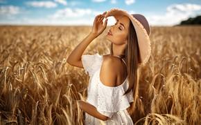 Обои поле, лето, девушка, природа, модель, шляпа