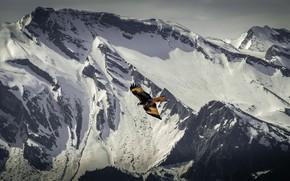 Картинка зима, снег, полет, горы, птица, орел, вершины, хищник
