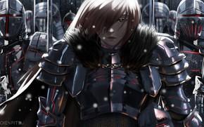 Картинка девушка, рыцари, войско