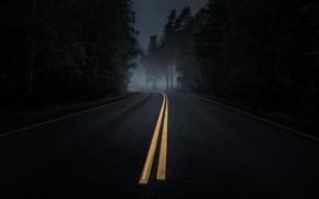 Картинка дорога, лес, асфальт, туман, сумерки