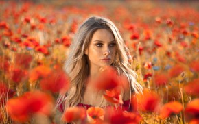 Картинка поле, взгляд, девушка, цветы, природа, маки, блондинка, локоны, Anna Rawka