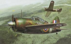 Картинка истребитель, Новая Зеландия, США, Палубный, RNZAF, F2A, Brewster B-339 Buffalo «Pacific Theater»