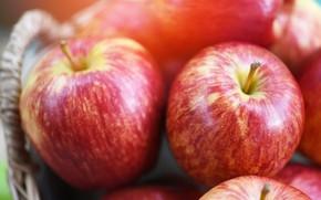 Картинка крупный план, яблоки, еда, размытие, красные, фрукты, корзинка