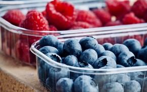 Картинка ягоды, малина, еда, урожай, черника, контейнеры