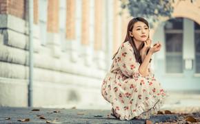 Картинка девушка, платье, азиатка, сидит, милашка, боке