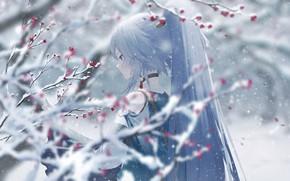 Картинка девушка, снег, цветы, ветки, Honkai Impact 3