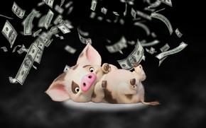 Картинка фон, деньги, свинья, поросенок