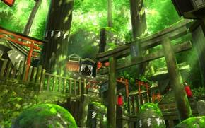 Картинка мох, Япония, ступени, храм, лисы, лучи света, святилище, кицунэ, таинственный лес, ворота тории, большие деревья