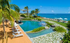 Картинка пальмы, отдых, бассейн, отель, лежаки, Карибы, Сент-Китс и Невис