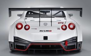 Картинка GTR, Nissan, GT-R, гоночное авто, спойлер, вид сзади, GT3, 2018, Nismo