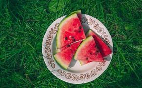 Картинка зелень, трава, поляна, арбуз, тарелка, кусочки, дольки