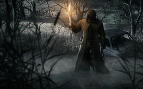 Картинка болото, факел, Stalker, бандит, DKud, Черный сталкер