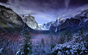 Картинка зима, облака, снег, деревья, пейзаж, горы, природа, США, Йосемити, леса, заповедник, Йосемитский национальный парк