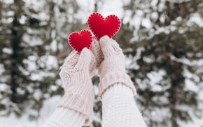 Картинка snow, снег, варежки, зима, сердце, любовь, valentine, romantic, hands, love, heart, winter