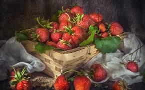 Картинка ягоды, клубника, корзинка, марля, Владимир Володин