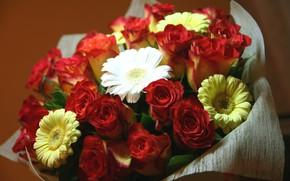 Картинка цветы, бумага, розы, букет