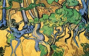 Картинка Винсент ван Гог, Tree Roots, and Trunks