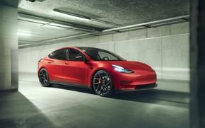 Картинка Tesla, Novitec, Model 3, 2019