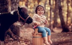 Картинка осень, лес, деревья, природа, улыбка, животное, мальчик, малыш, пони, ребёнок, дудка, боке, Анна Ипатьева