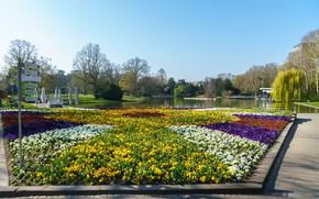 Картинка небо, солнце, деревья, цветы, пруд, парк, дома, Германия, указатели, Botanischer Garten Karlsruhe