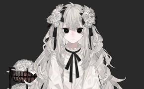 Картинка Девушка, Grey Hair, Black Eyes