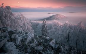 Картинка зима, иней, облака, снег, деревья, пейзаж, закат, горы, природа, камни, луна, Чехия