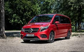 Картинка красный, Mercedes-Benz, минивэн, 4MATIC, AMG Line, V-класс, 300 d