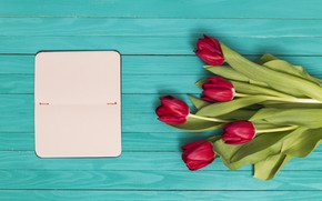 Картинка цветы, тюльпаны, красные, red, wood, flowers, tulips, spring