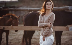 Картинка девушка, поза, лошади, свитер, Елена Молчанова